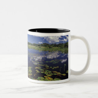 S.A., Brazil, Waterways in Pantanal Two-Tone Coffee Mug