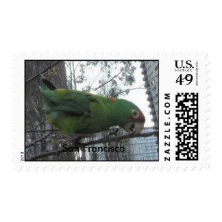 S.F. Wild parrot #4 Postage