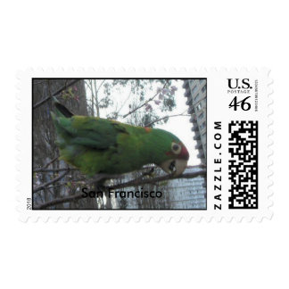 S.F. Wild parrot #4 Postage Stamps