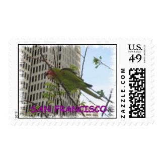 S.F. Wild parrot Postage