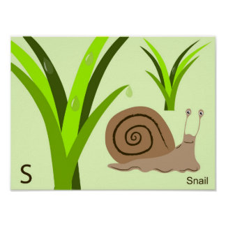 S for snail Poster