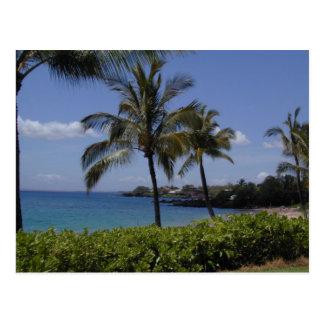 S. Makena Beach, Hawaii Postcard