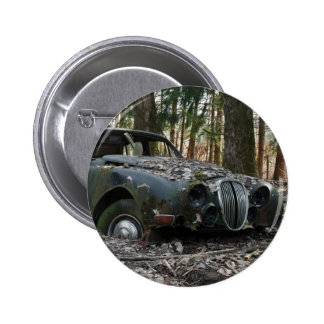 S-Tipo de Jaguar Pin
