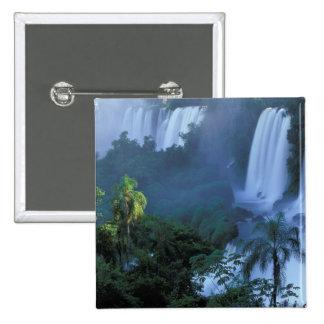 SA, Brazil, Parana State; Iguacu NP, Iguacu Button