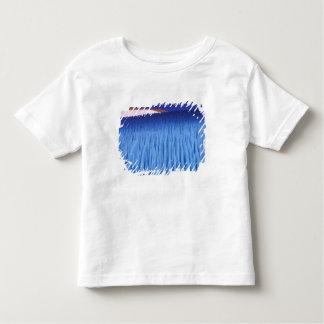SA, Chile, Coquimbo Region, Nieve Penitente; Toddler T-shirt