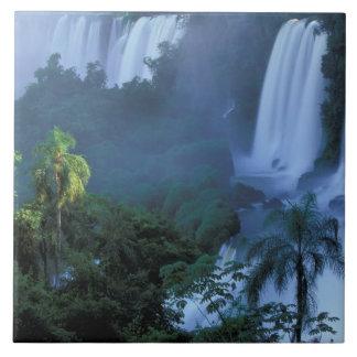 SA, estado del Brasil, Paraná; Iguacu NP, Iguacu Azulejo Cuadrado Grande