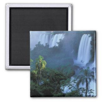SA, estado del Brasil, Paraná; Iguacu NP, Iguacu Imán Cuadrado