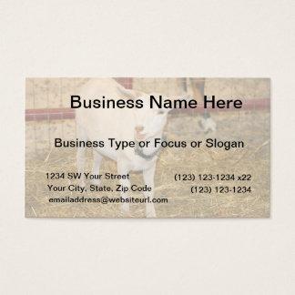 Saanen doeling goat mouth open business card