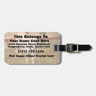 Saanen doeling goat mouth open luggage tags
