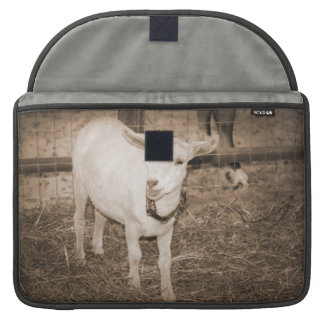 Saanen doeling sepia goat mouth open sleeve for MacBook pro