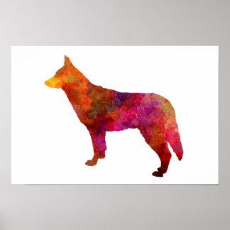 Saarloos Wolfdog in watercolor Poster