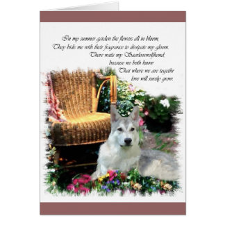 Saarlooswolfhond Art Gifts Card
