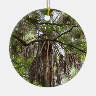sabal palm through live oak branches tree ceramic ornament