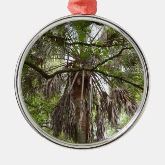 sabal palm through live oak branches tree metal ornament