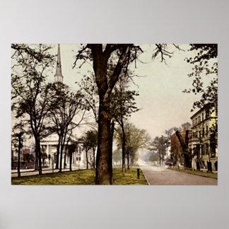 Sabana, avenida de Georgia Oglethorpe Póster