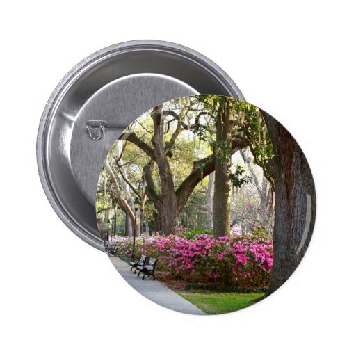Sabana Georgia en las azaleas Oa del parque de For Pins