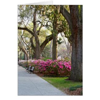 Sabana Georgia en las azaleas Oa del parque de For Tarjeton