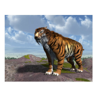 Saber Tooth Tiger Postcard