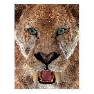 Saber Toothed Ttiger or Smilodon Postcard