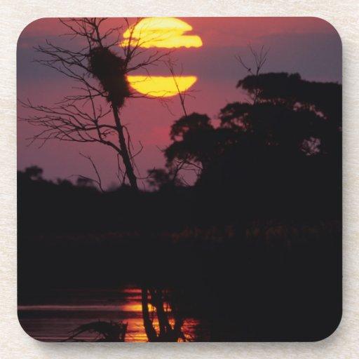Sabi River At Sunset, Kruger National Park Beverage Coasters