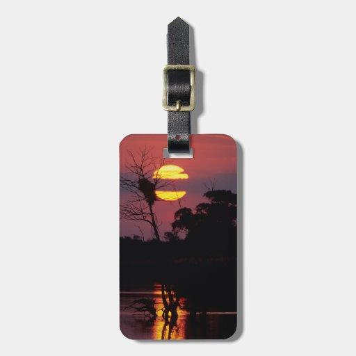 Sabi River At Sunset, Kruger National Park Tag For Luggage