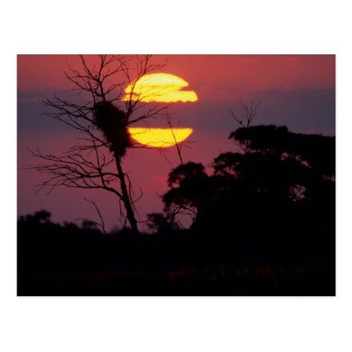 Sabi River At Sunset, Kruger National Park Post Cards
