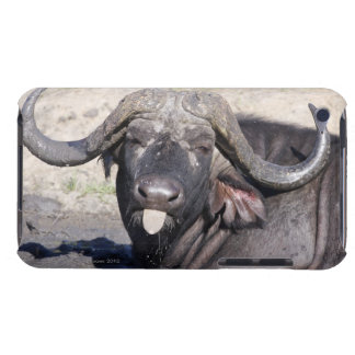 Sabi Sands Conservancy, Mpumalanga Province, 2 iPod Touch Case