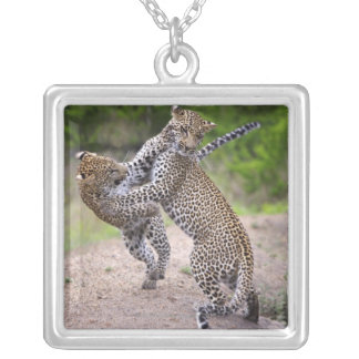 Sabi Sands Conservancy, Mpumalanga Province, Square Pendant Necklace
