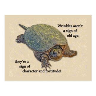 Sabiduría arrugada de la edad avanzada de la tortu postales