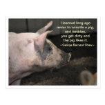Sabiduría del cerdo - lucha postales