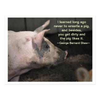 Sabiduría del cerdo - lucha postal