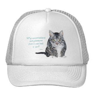 ¿Sabiduría del gato - quién creería? Gorras De Camionero