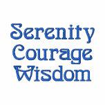 Sabiduría del valor de la serenidad polo