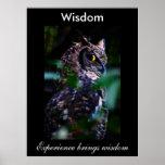 Sabiduría Impresiones