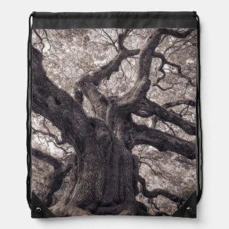 Sabiduría poderosa de la naturaleza del árbol de f mochilas