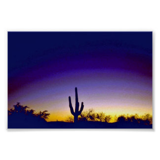 Sabino Canyon Arizona Sunset Posters