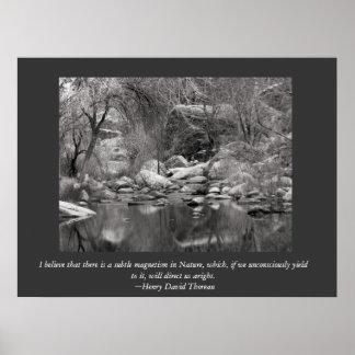 Sabino Canyon Creek - Thoreau Canvas Print