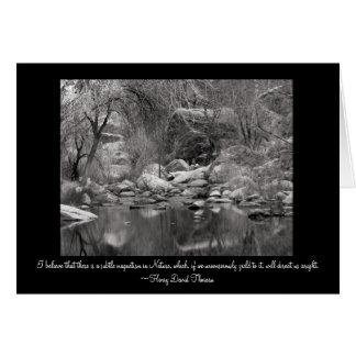 Sabino Canyon Creek - Winter Scene Greeting Card