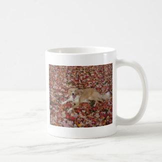 Sable Border Collie~Mug Coffee Mug