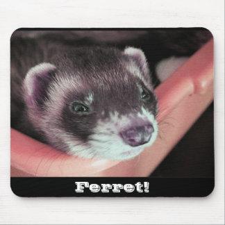 Sable Ferret Mousepad