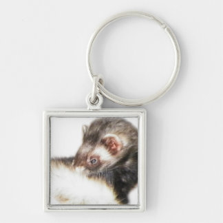 Sable Ferret Picture Keychain