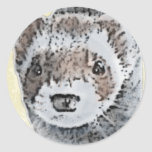 Sable Ferret Picture Round Stickers