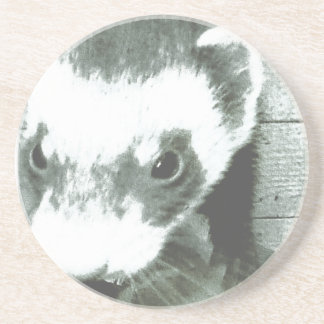 Sable Ferret Picture Sandstone Coaster