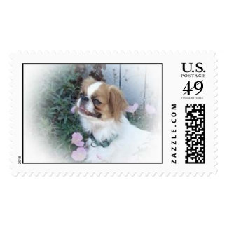 Sable Japanese Chin Postage Stamps