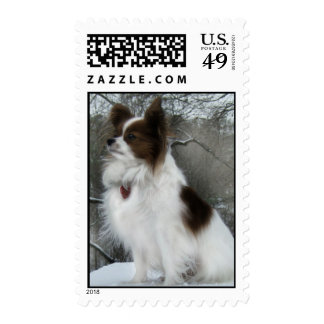 Sable Papillon in the Snow Stamp