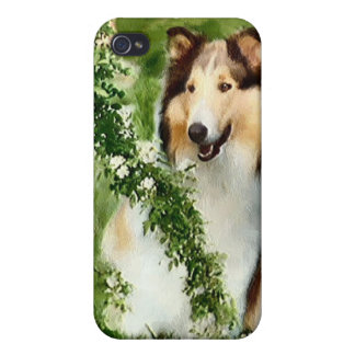Sable Rough Collie Art iPhone 4 Cover