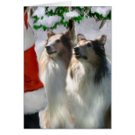 Sable Rough Collie Christmas Gifts Card