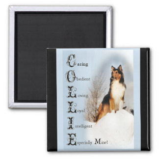 Sable Rough Collie Gifts Magnet