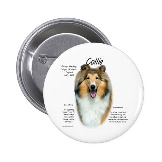 Sable Rough Collie Meet the Breed -  Button