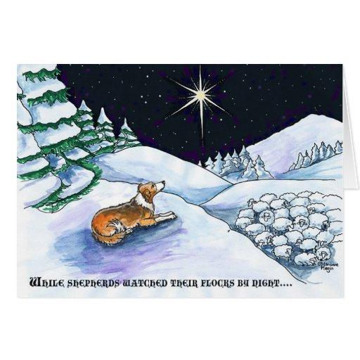 Sable sheepdog Christmas card